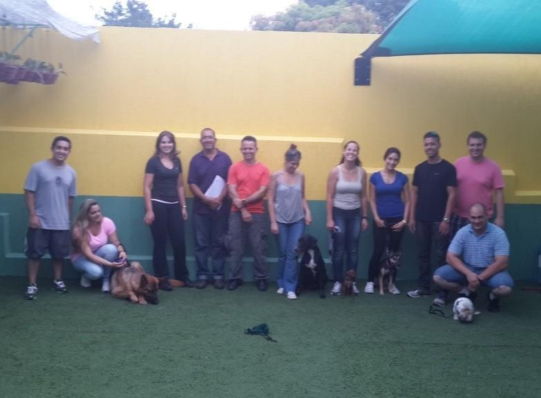 Curso de Dog Walker em SP