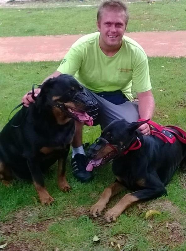 Dog Walker, Passeador de Cães na zona norte de SP